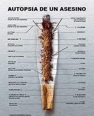 tabakoaren osagaiak