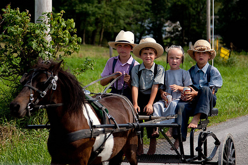 amish umeak (FlickrCC, trustypics)